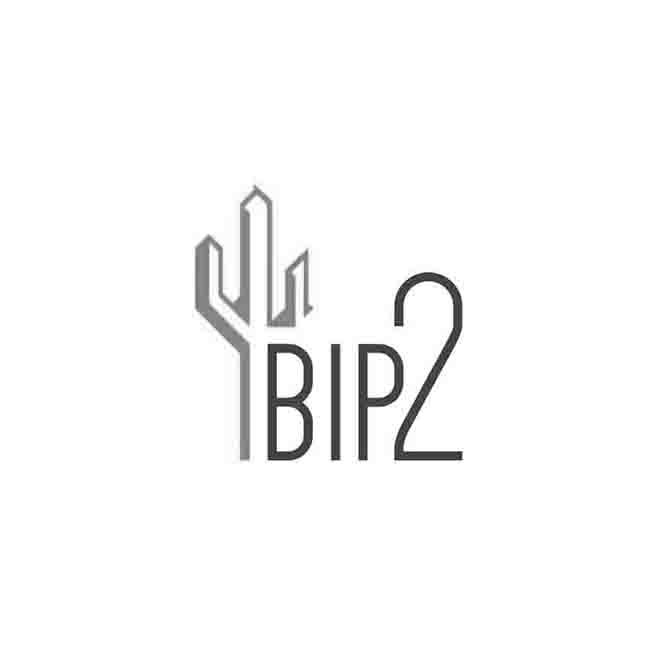 sito web agenzia visti documenti bip2 logo design