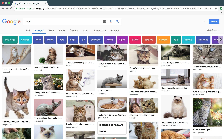 nuova interfaccia ricerca google immagini